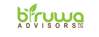 Biruwa website logo